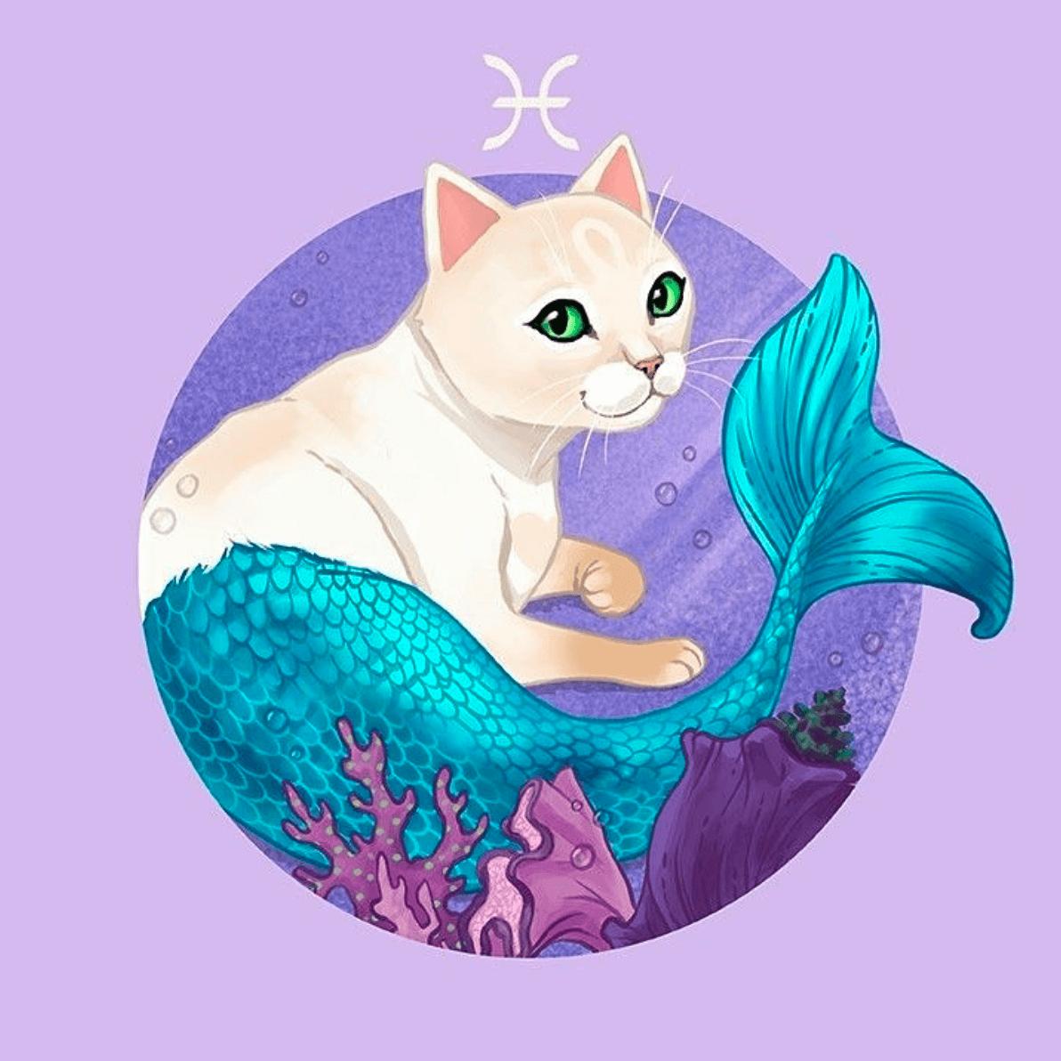 Katze Fische