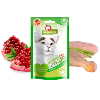 poultry & cat grass